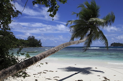 Seychellen-27.JPG